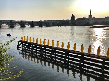 Les pinguins de Prague